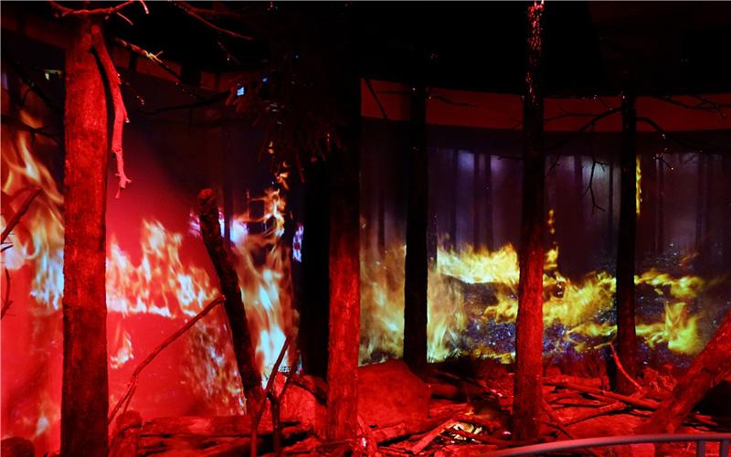 模拟森林火灾场景