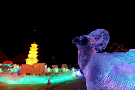 中国·齐齐哈尔龙沙动植物园首届动物冰雪大世界元旦试营业