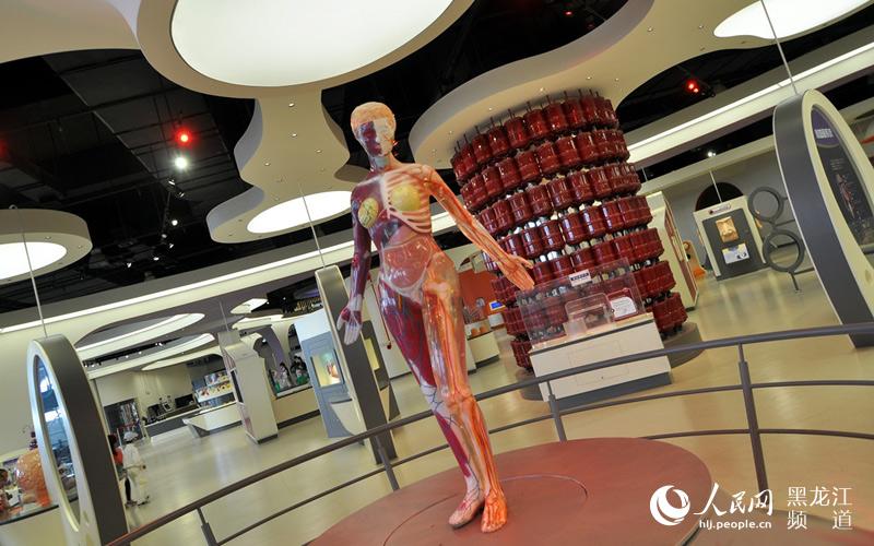 黑龙江省科学技术馆是一个现代化、多功能的大型科普场馆,坐落在哈尔滨市太阳岛风景区,占地面积5万平方米,建筑面积2.5万平方米。 馆内设有机械、能源、材料、航空航天交通、数学、力学、生命环境、声与光、电与磁、信息技术、消防知识、儿童科学及走进兴安岭等12个展区,400件套展品。每件展品都形象生动地说明一个科学原理或是一种科学技术成果的应用。80%的展品都是引人入胜的互动游戏,大到宇宙苍穹,小到细胞微粒,都能在这里得到生动形象的展示,让参观者在动手中体验科学的乐趣,是科学教育最佳选择。 图片由人民网黑龙江频道