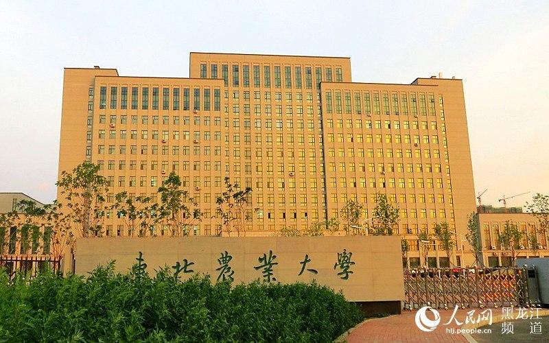 东北农业大学教学楼.吴玖 摄