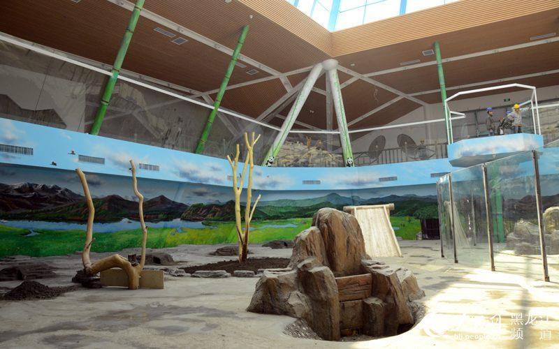 建设中的亚布力森林动物园熊猫馆.