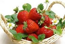 草莓增白桃子除皱 10食物吃出无瑕美肌草莓属浆果,含糖量高达6%-10%,并含多种果酸、维他命及矿物质等,可增强皮肤弹性,具有美白和滋润保湿的功效。另外,草莓比较适合于油性皮肤,具有去油、洁肤的作用,将草莓挤汁可作为美容品敷面。【详细】卫生健康|健康图集