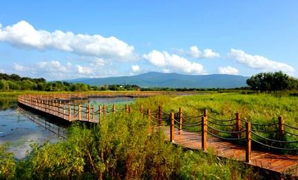 黑瞎子岛湿地公园中国黑瞎子岛湿地公园位于黑瞎子岛西侧,俄罗斯兵营