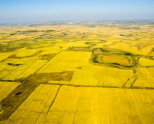 黑龙江2018年新增650万亩耕地轮作试点