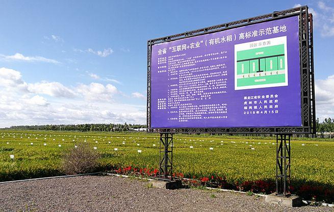 虎林市人口_虎林的人口民族