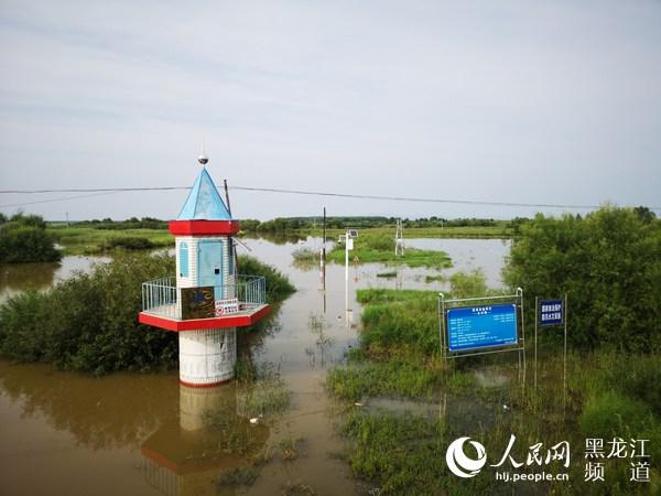 黑龙江省各级水文部门为防汛科学决策提供强力支撑