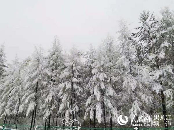 http://www.hljold.org.cn/shishangchaoliu/249910.html