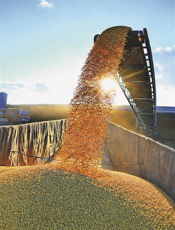 农业gdp_因疫情影响,巴西工业在GDP中缩水,农业获得突出地位